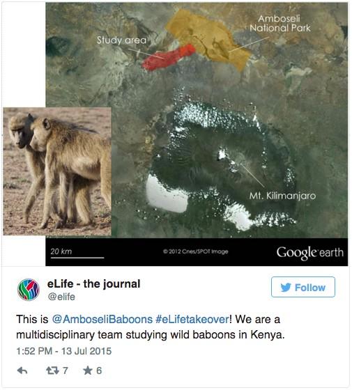 Hello from Amboseli Lab