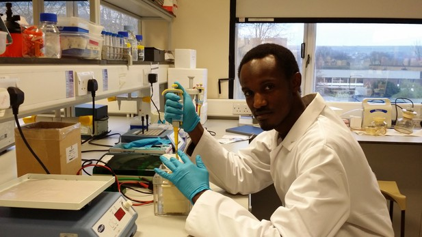 Mahmoud Bukar Maina pipetting in the lab