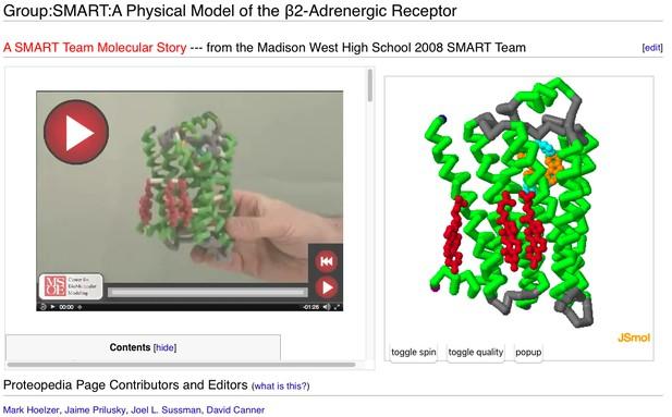 B2 Andrenergic Receptor