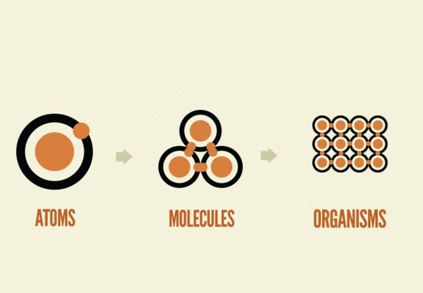 Pictorial diagram of atom (single dot) to molecules (three dots) to organisms (twelve dots)