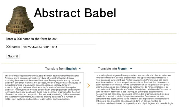 doi entry field with english text box on left and translation language text box on right