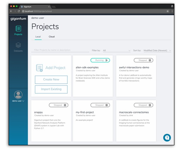 Screenshot of Projects interface in browser