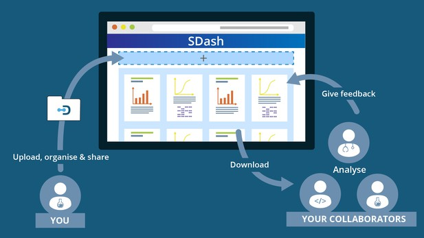 SDash workflow
