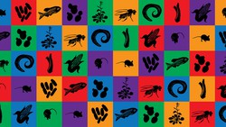 The Natural History of Model Organisms