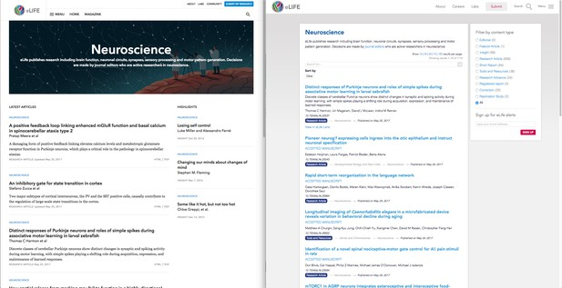 Landing page for neuroscience