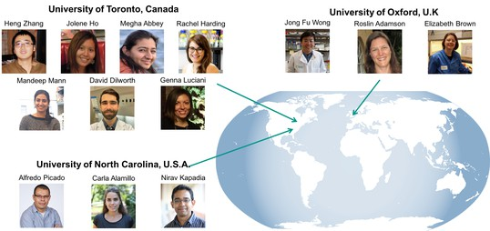 Photographs of some of the researchers taking part in the open notebook project. Heng Zhang, Jolene Ho, Megha Abbey, Rachel Harding, Mandeep Mann, David Dilworth and Genna Luciani are based at the University of Toronto, Canada; Alfredo Picado, Carla Alamillo and Nirav Kapadia are based at theUniversity of North Carolina, USA; and Jong Fu Wong, Roslin Adamson and Elizabeth Brown are based at the University of Oxford, UK.
