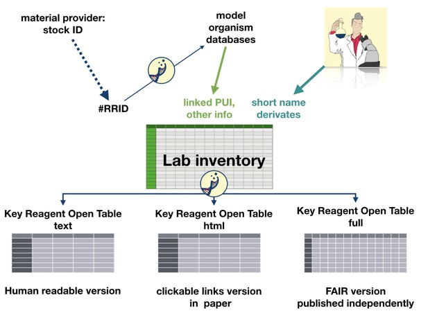 A diagram linking material IDs to inventory to tables in publications