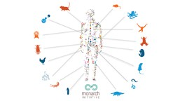 Human outline surrounded by silhouettes of different animals used in research