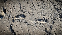 Footprints of the past