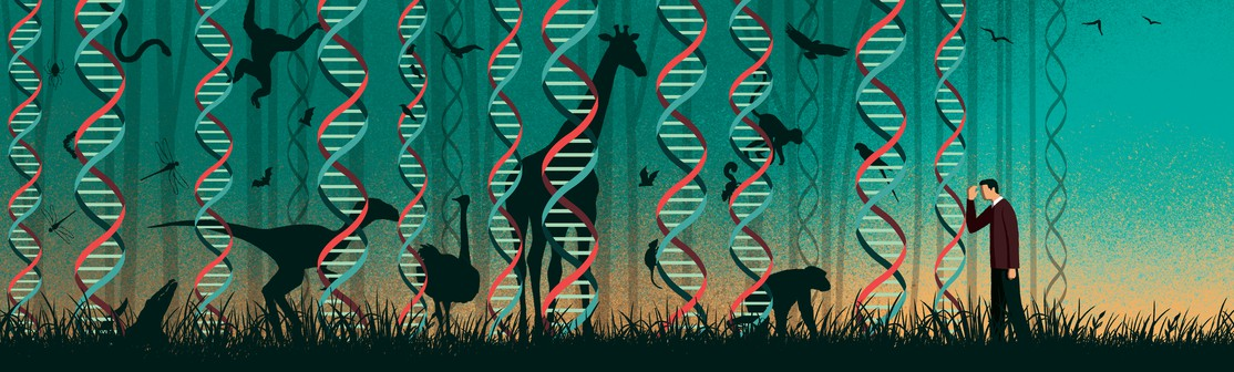 Genomics and Evolutionary Biology
