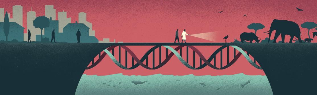 Chromosomes and Gene Expression