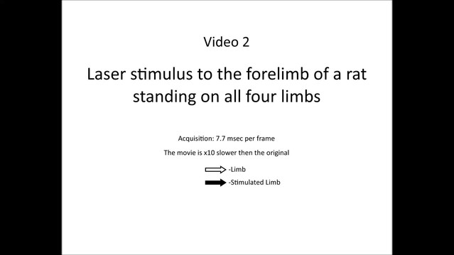 posterframe for video