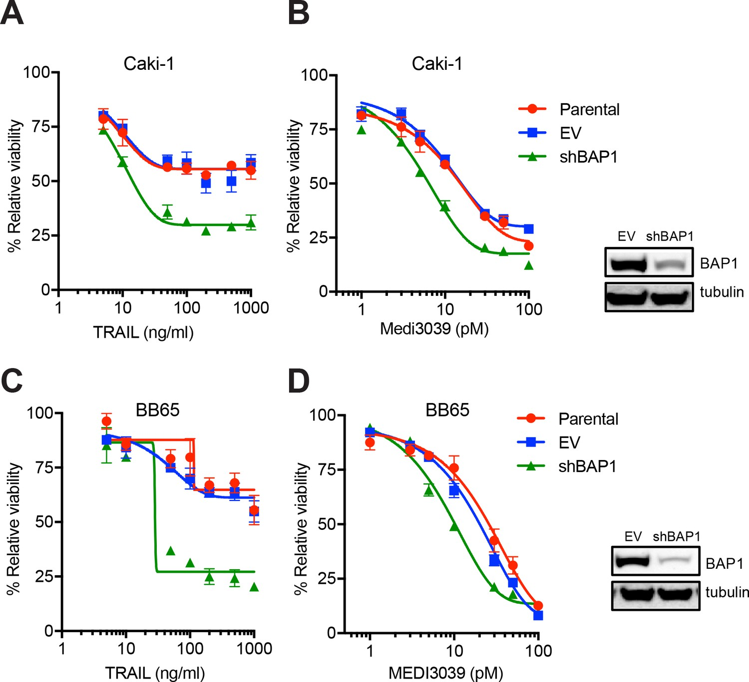 Loss of functional BAP1 augments sensitivity to TRAIL in cancer ...