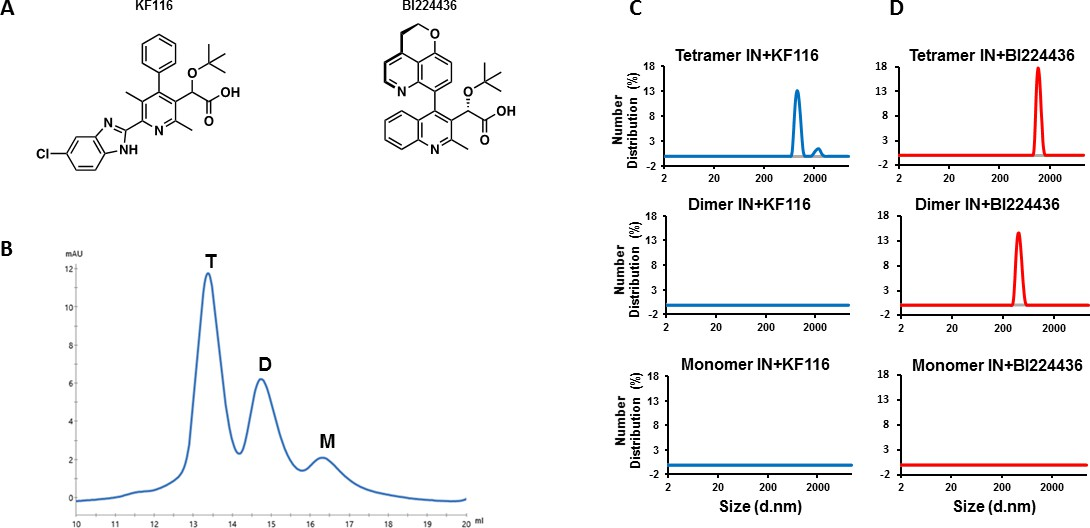 HIV-1 integrase tetramers are the antiviral target of pyridine ...