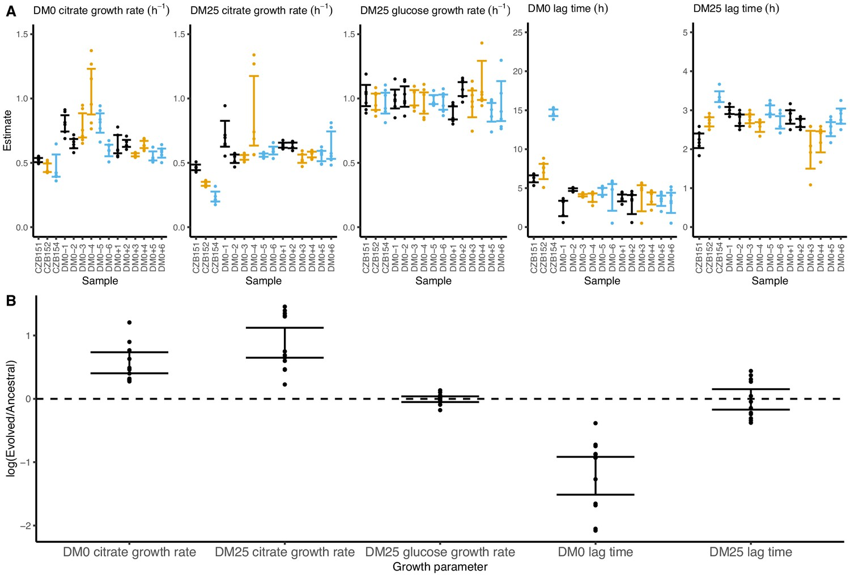 Genomic and phenotypic evolution of Escherichia coli in a novel ...