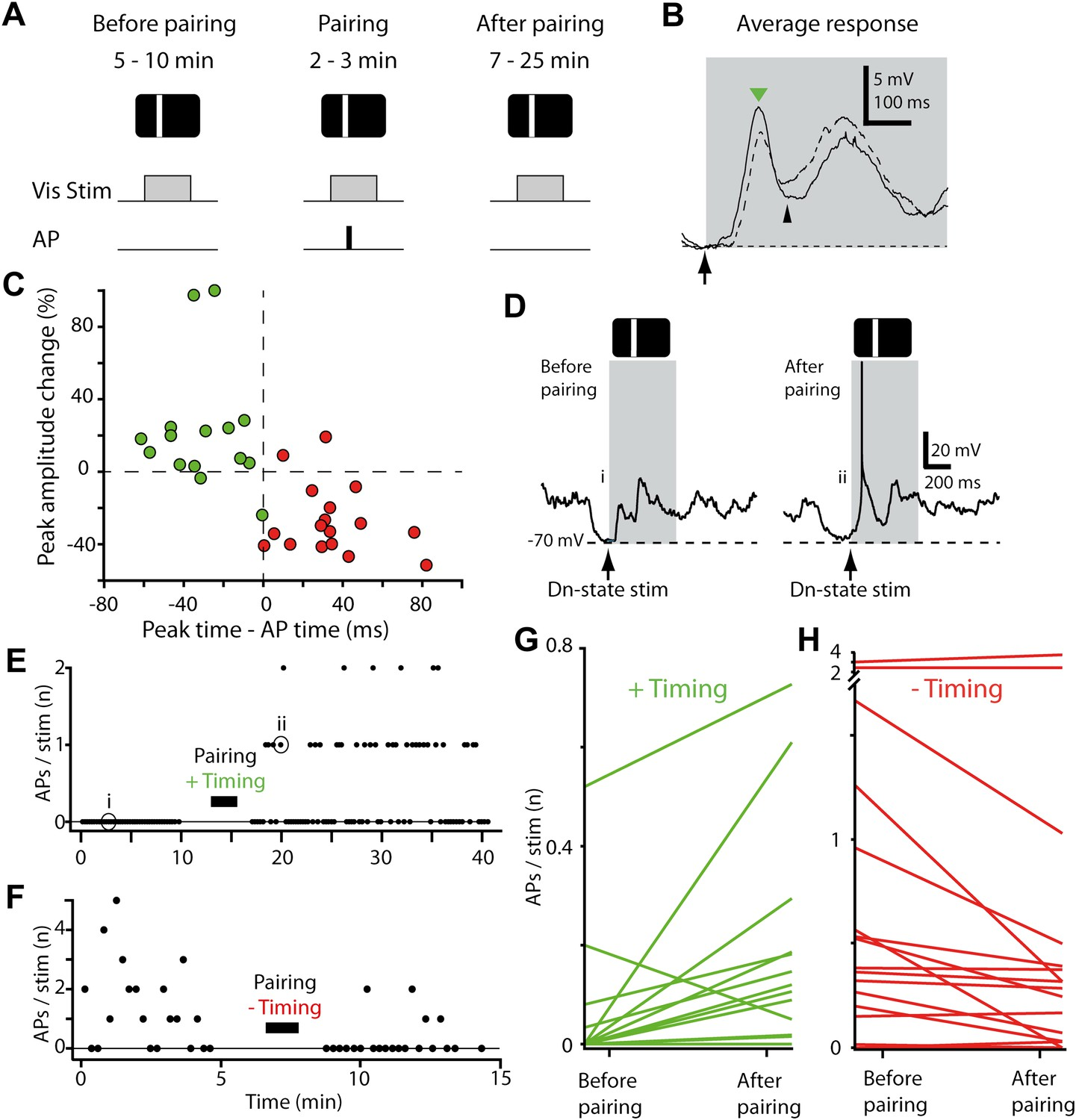 Changing The Responses Of Cortical Neurons From Sub To Positive Trigger Timer Circuit Simulating State Variable Filter Stdp Converts Subthreshold Visual Stimuli Into Suprathreshold