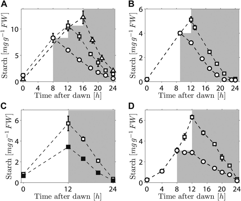 Arabidopsis plants perform arithmetic division to prevent