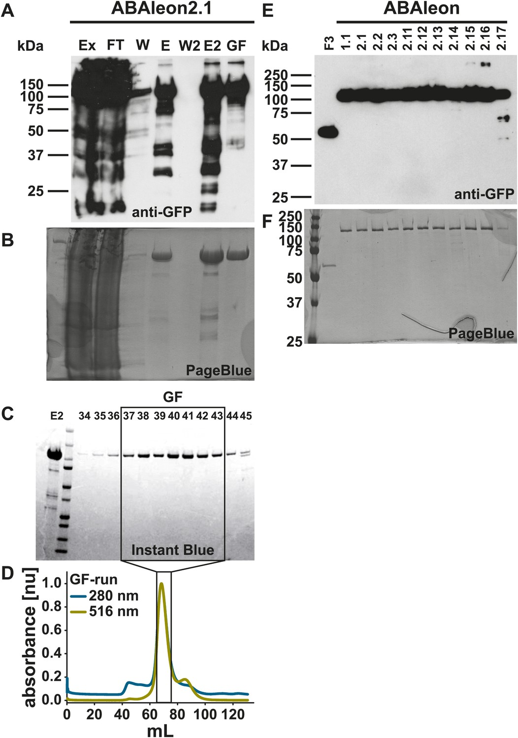 Fret Based Reporters For The Direct Visualization Of Abscisic Acid Still Diagram Rectifying Plant Purifying Purification Abaleons After Expression In E Coli