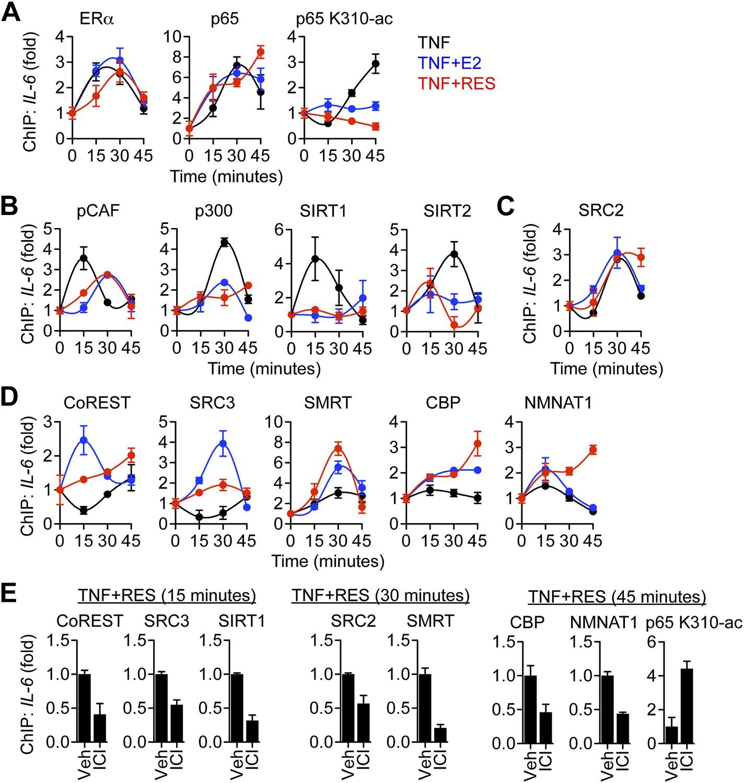Resveratrol modulates the inflammatory response via an
