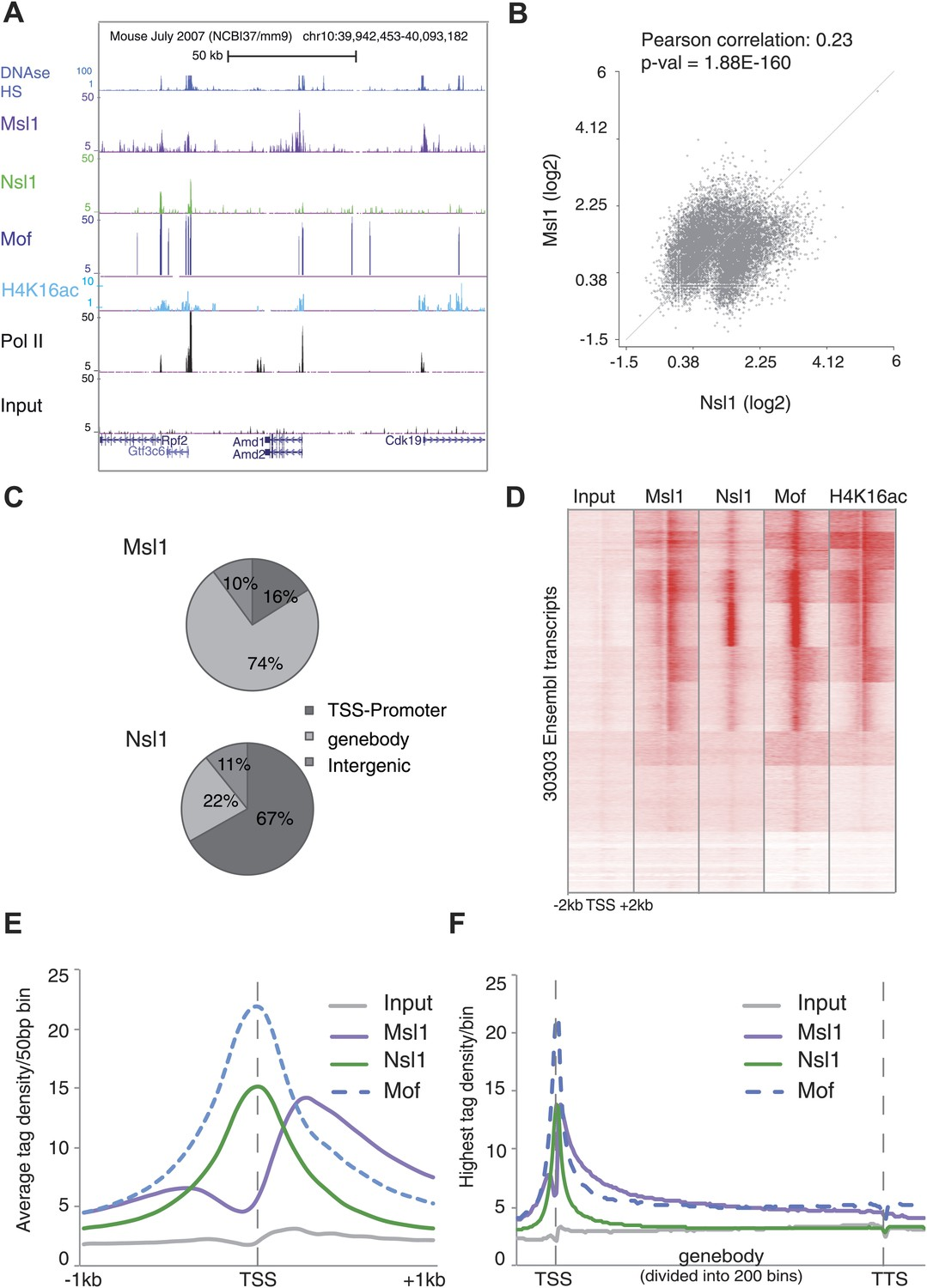 Mof Associated Complexes Have Overlapping And Unique Roles In Pump Action Shotgun Diagram Distinct Binding Profiles Of Msl1 Nsl1 At Active Genes