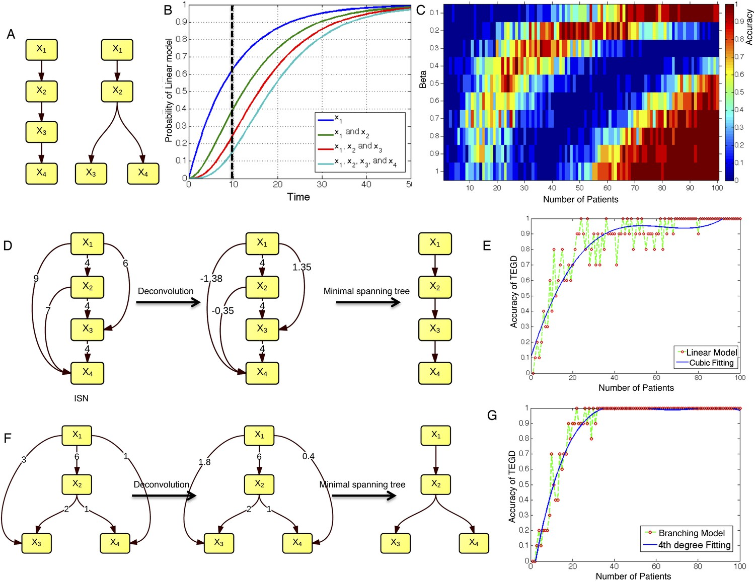 Tumor evolutionary directed graphs and the history of