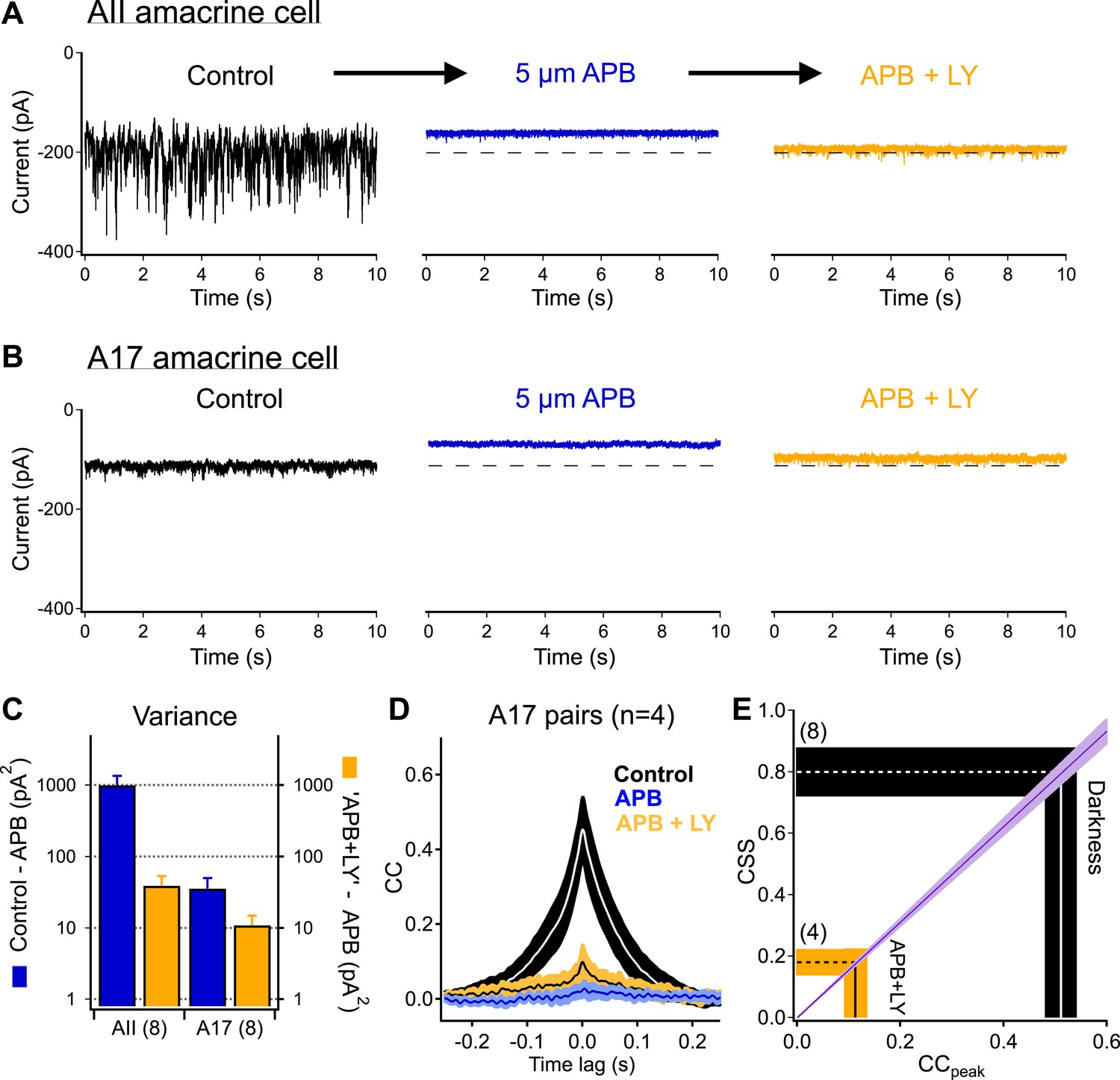 Cross-synaptic synchrony and transmission of signal and noise across