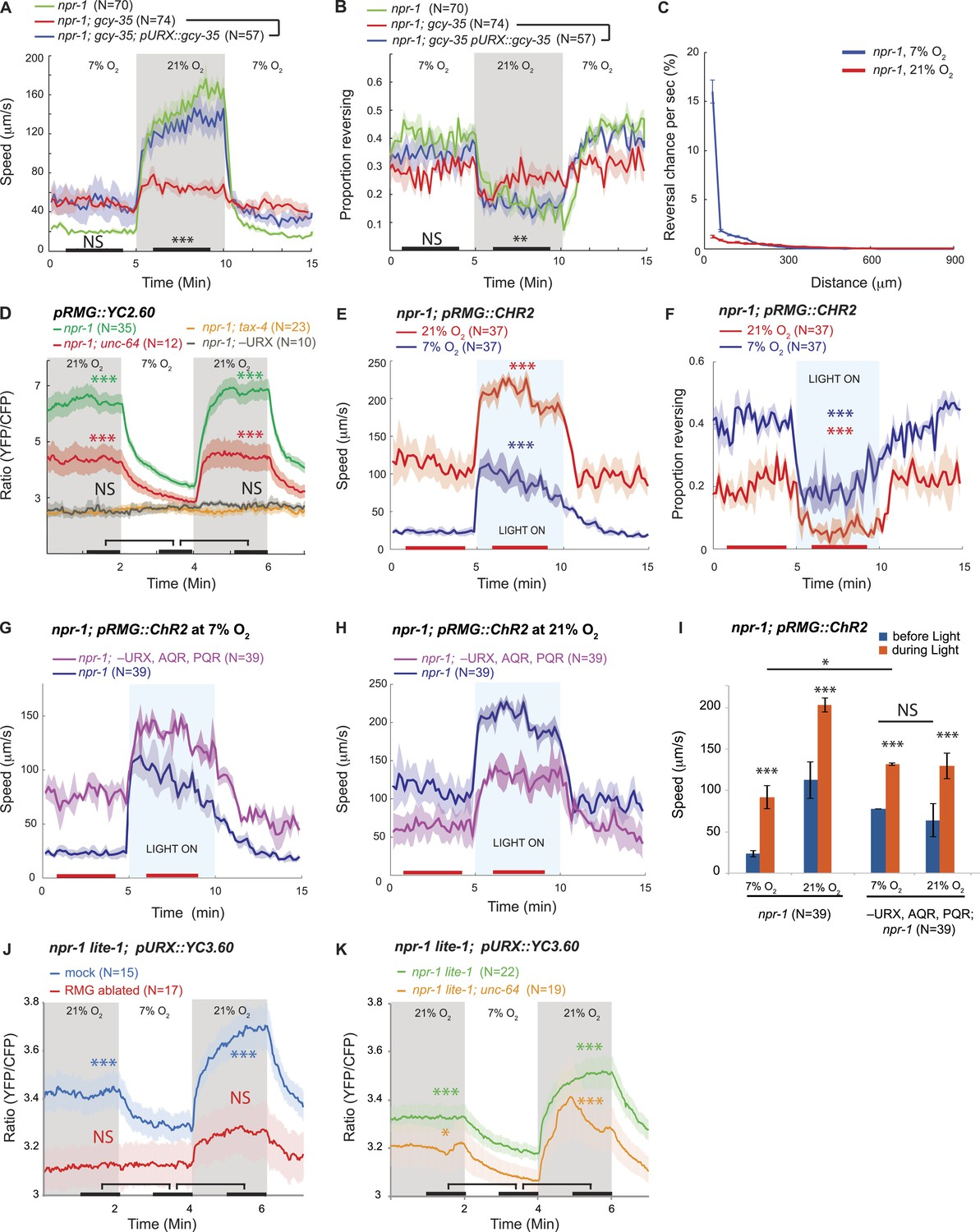 Decoding a neural circuit controlling global animal state in C ... on