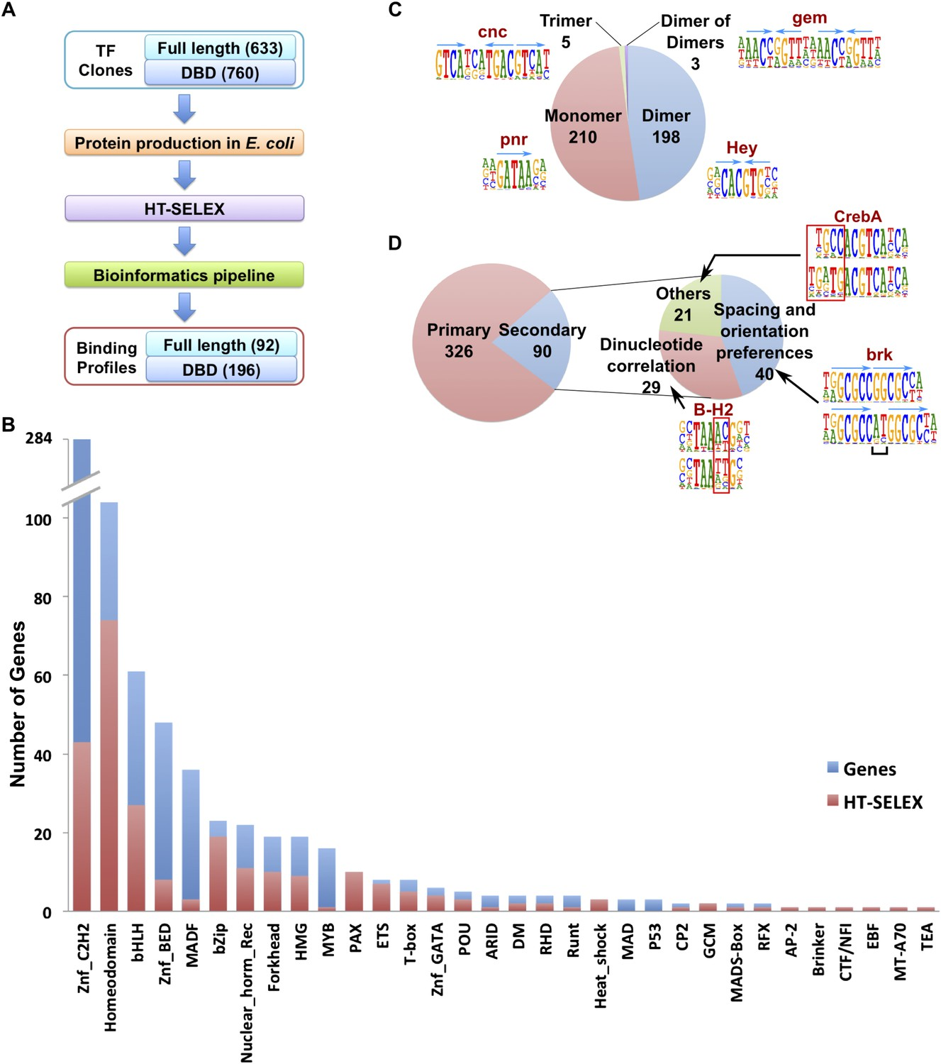 Conservation of transcription factor binding specificities across