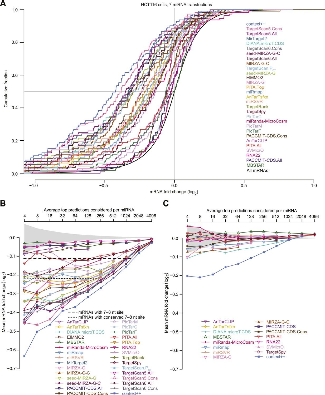 Predicting effective microRNA target sites in mammalian mRNAs | eLife