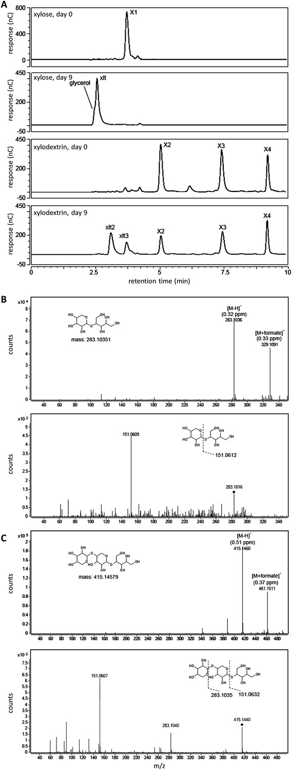 Expanding xylose metabolism in yeast for plant cell wall xylosyl xylitol oligomers generated in yeast cultures with xylodextrins as the sole carbon source nvjuhfo Images