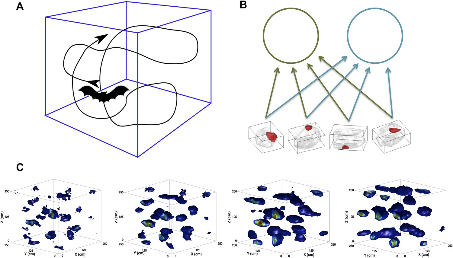 The self-organization of grid cells in 3D | eLife