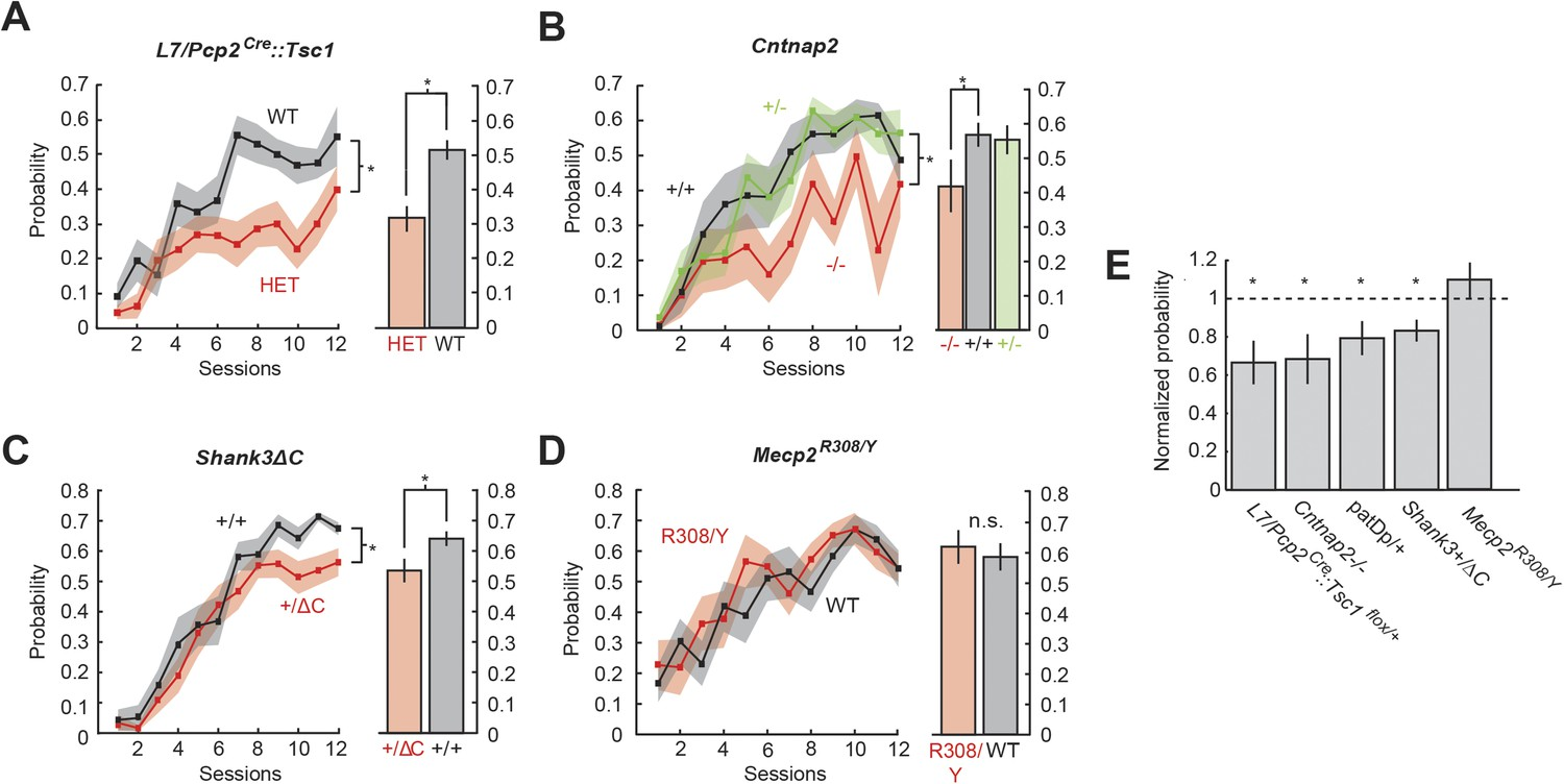 Cerebellar associative sensory learning defects in five mouse autism ...