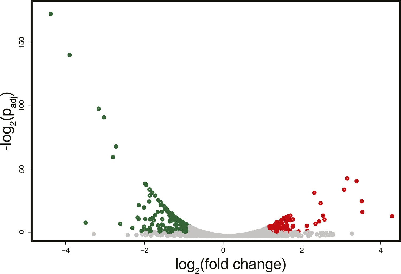 In vivo targeting of de novo DNA methylation by histone
