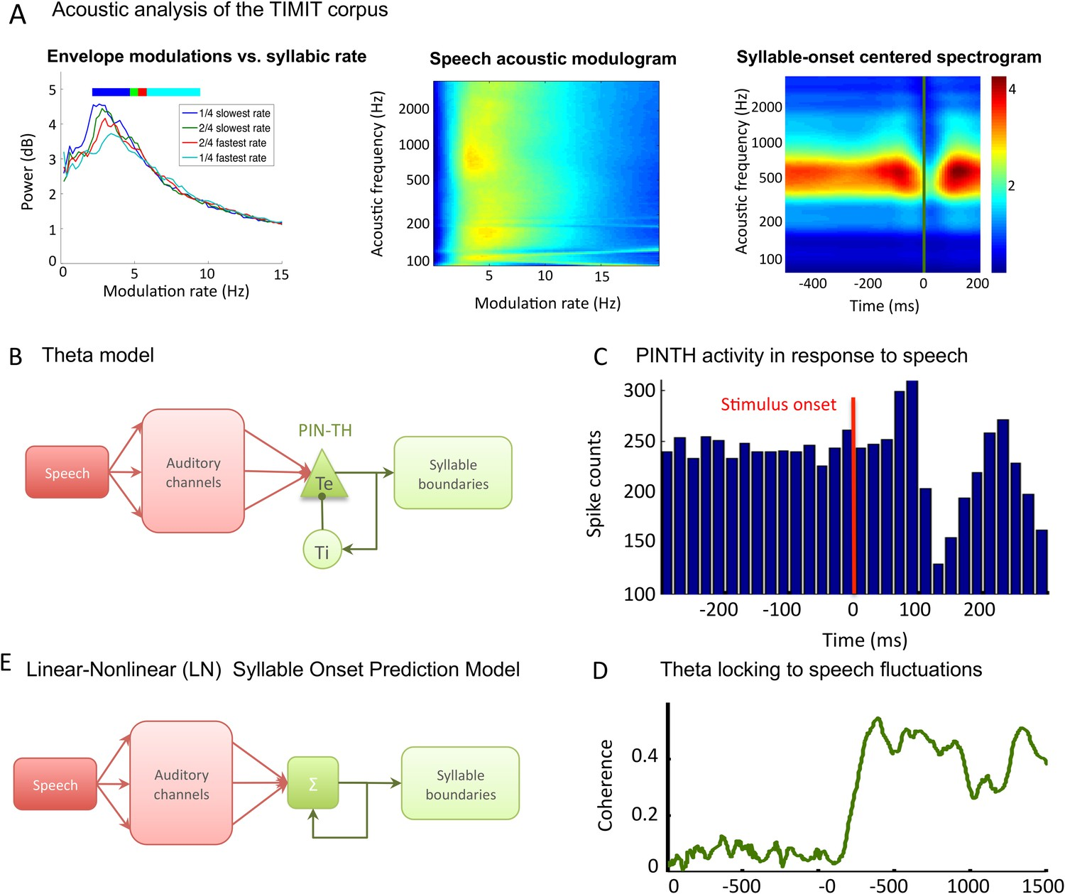 Speech encoding by coupled cortical theta and gamma