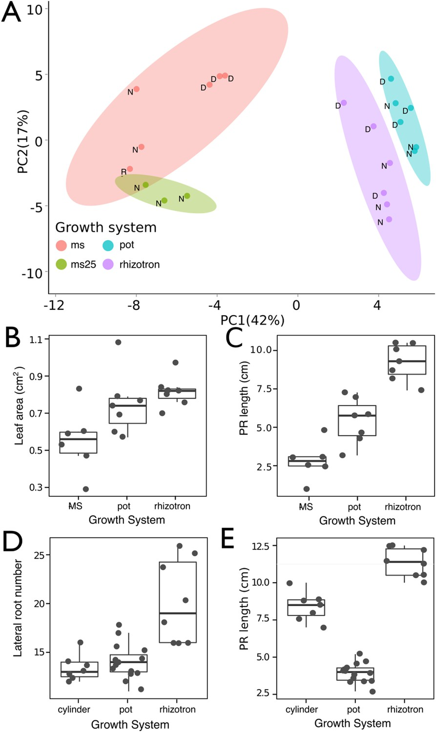 Glo Roots An Imaging Platform Enabling Multidimensional Pot Still Diagram Effect Of Different Growth Systems On Gene Expression And