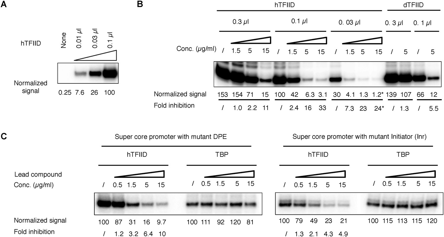Chemical Perturbation Of An Intrinsically Disordered Region Tfiid How To Protect A Reed Switch From Specific Loads Cynergy 3 Dependency The In Vitro Transcription Assay And Controls For Inhibition
