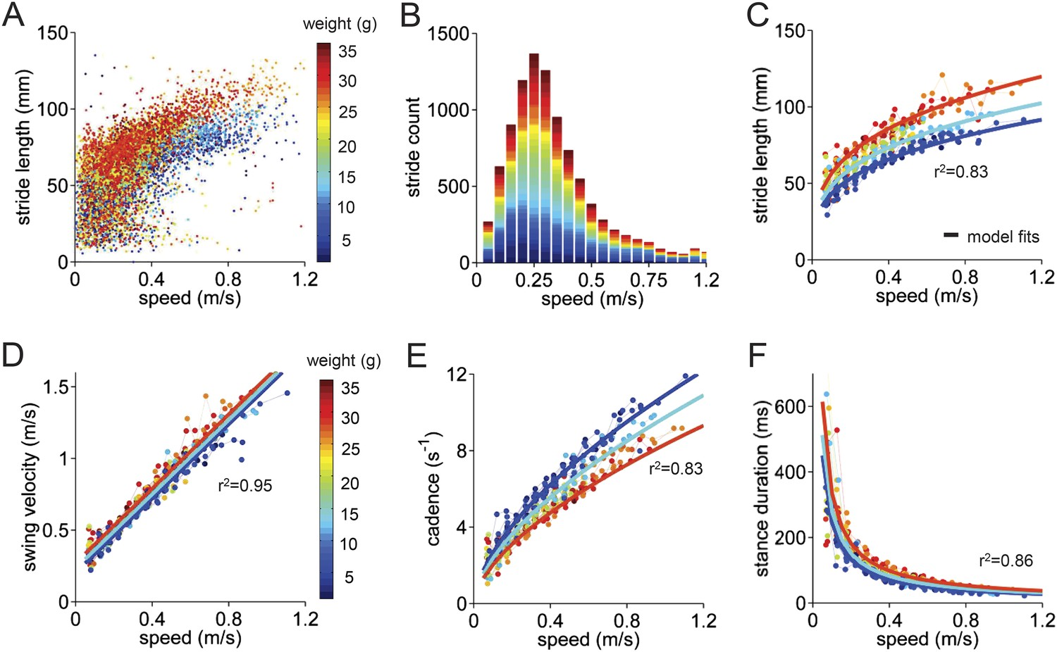 A Quantitative Framework For Whole Body Coordination Reveals By The Letter M In Ladder Logic Diagrams Continuous Motor Operation Basic Stride Parameters Can Be Predicted Using Only Walking Speed And Size