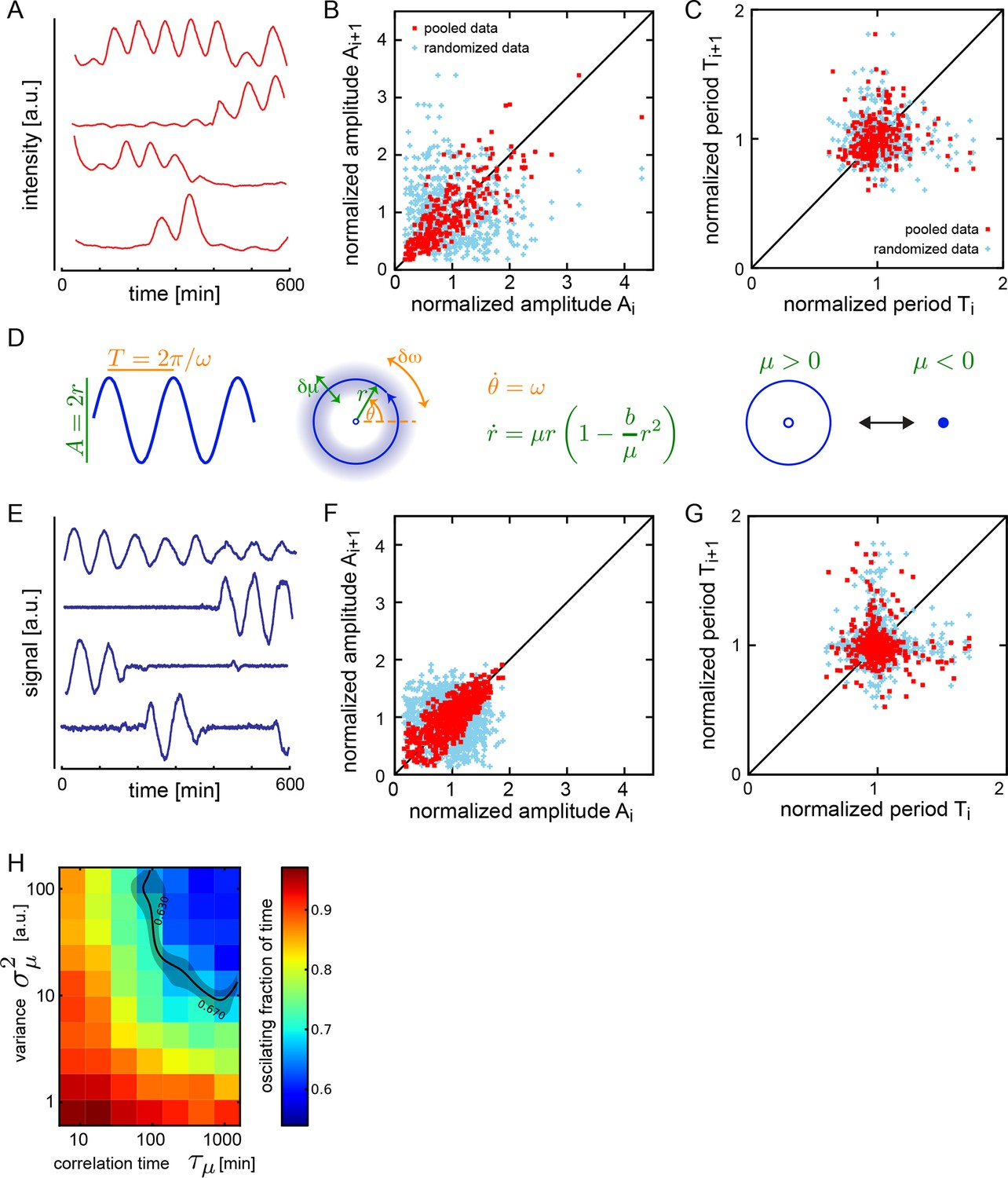 Persistence Period And Precision Of Autonomous Cellular Oscillators From An Oscillator Circuit Electrical Engineering Stack Exchange Dispersed Low Density Cells Show A Variety Behaviors Compatible With Slow Amplitude Fluctuations