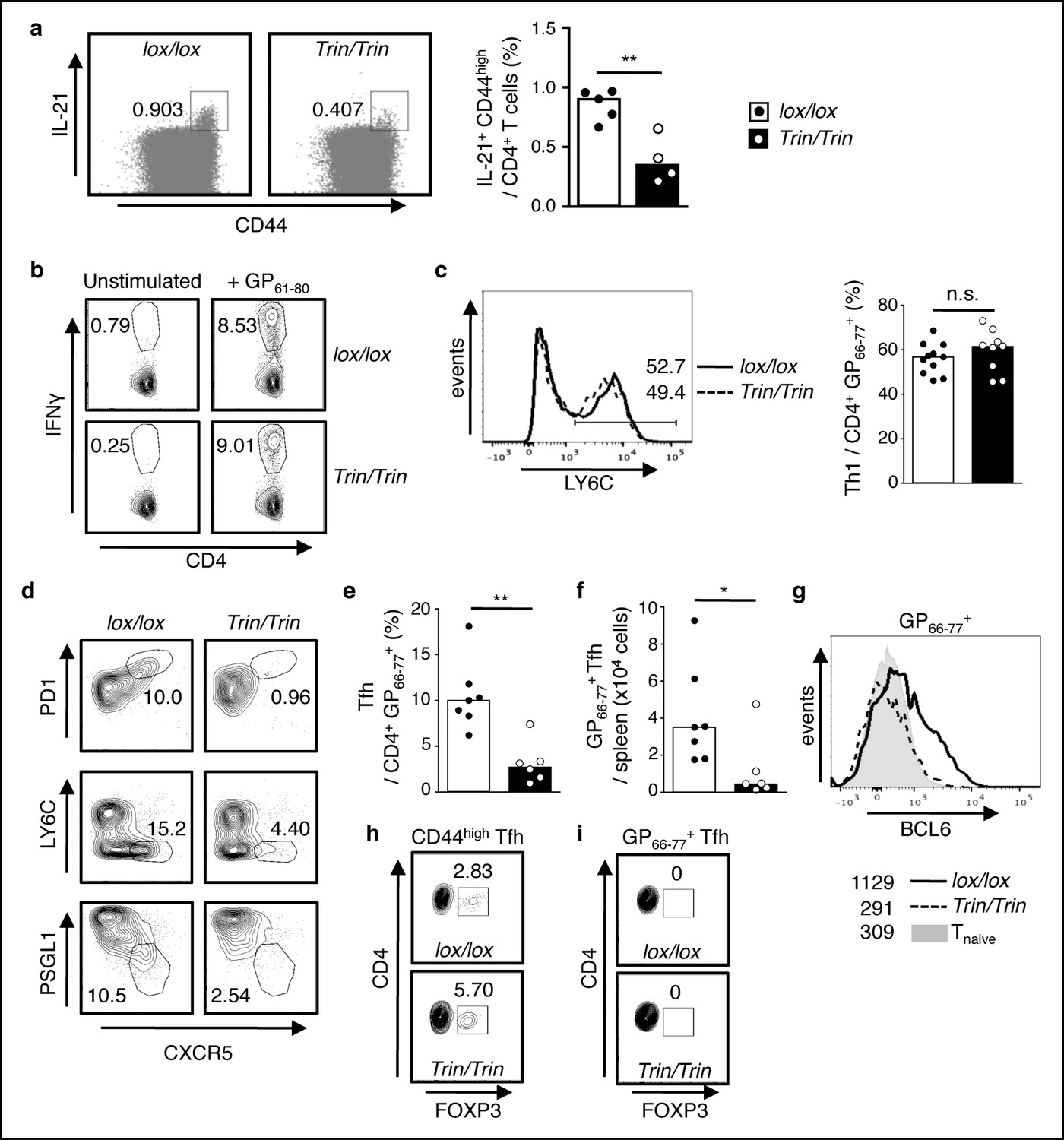 Attenuation Of Ampk Signaling By Roquin Promotes T Follicular Helper Randall 102 Central Heating Timer Wiring Diagram Functional Competency Ring Deleted Tfh Cell Responses