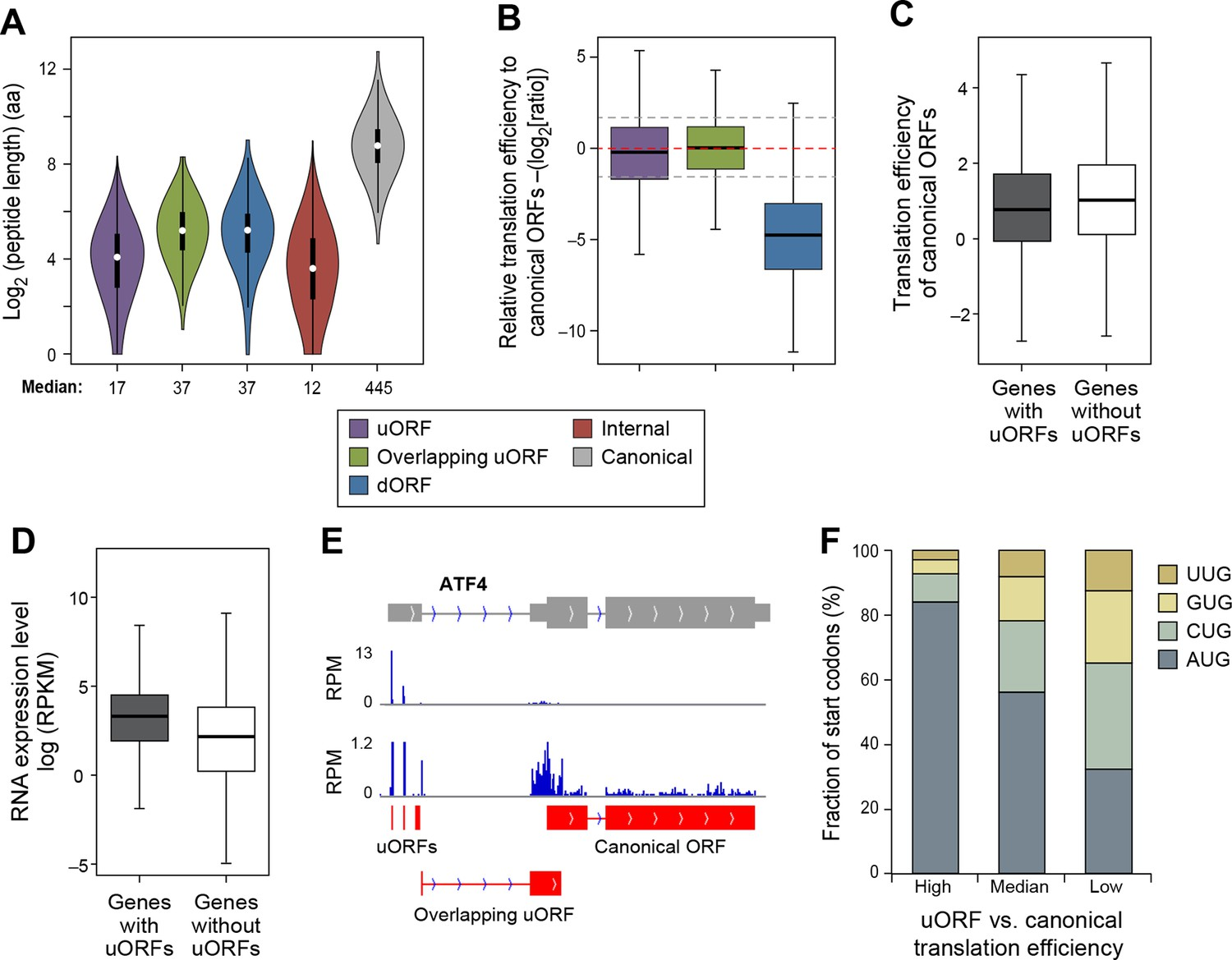 Many lncRNAs, 5'UTRs, and pseudogenes are translated and