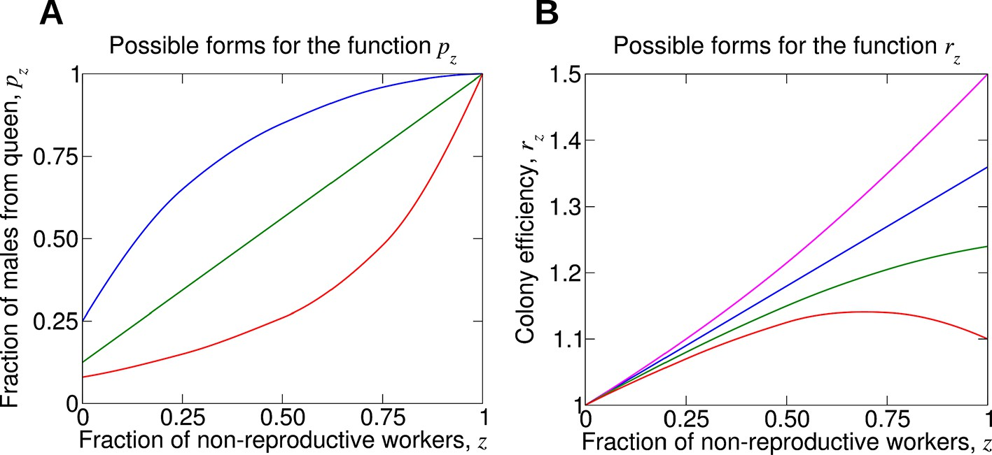 The evolution of non-reproductive workers in insect colonies with ...