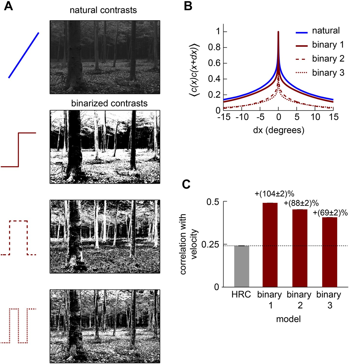Nonlinear Circuits For Naturalistic Visual Motion Estimation Elife What Do We If Come Across A Circuit More Complex Than The Simple Correlations In Binarized Natural Images