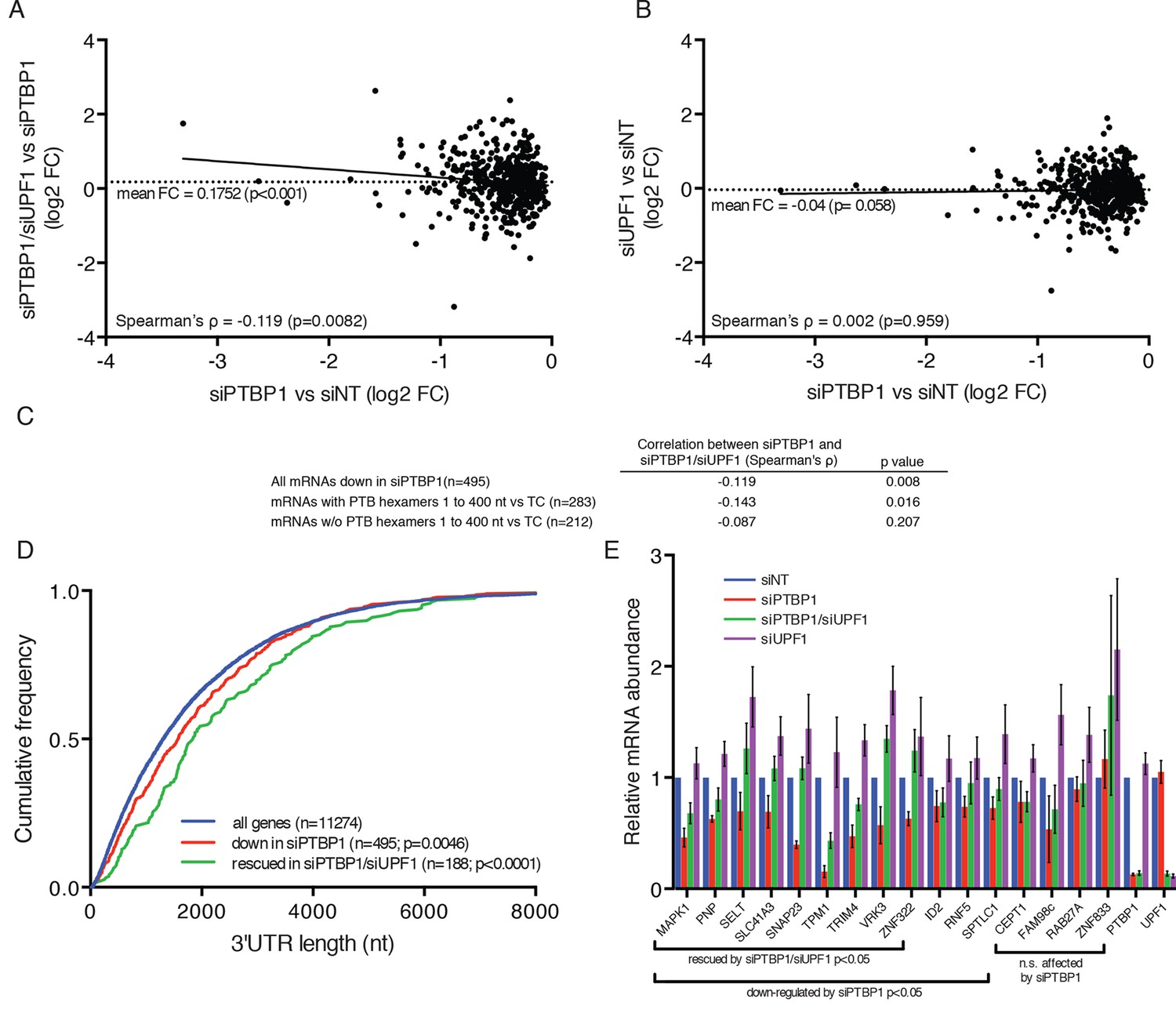 Polypyrimidine tract binding protein 1 protects mRNAs from ...