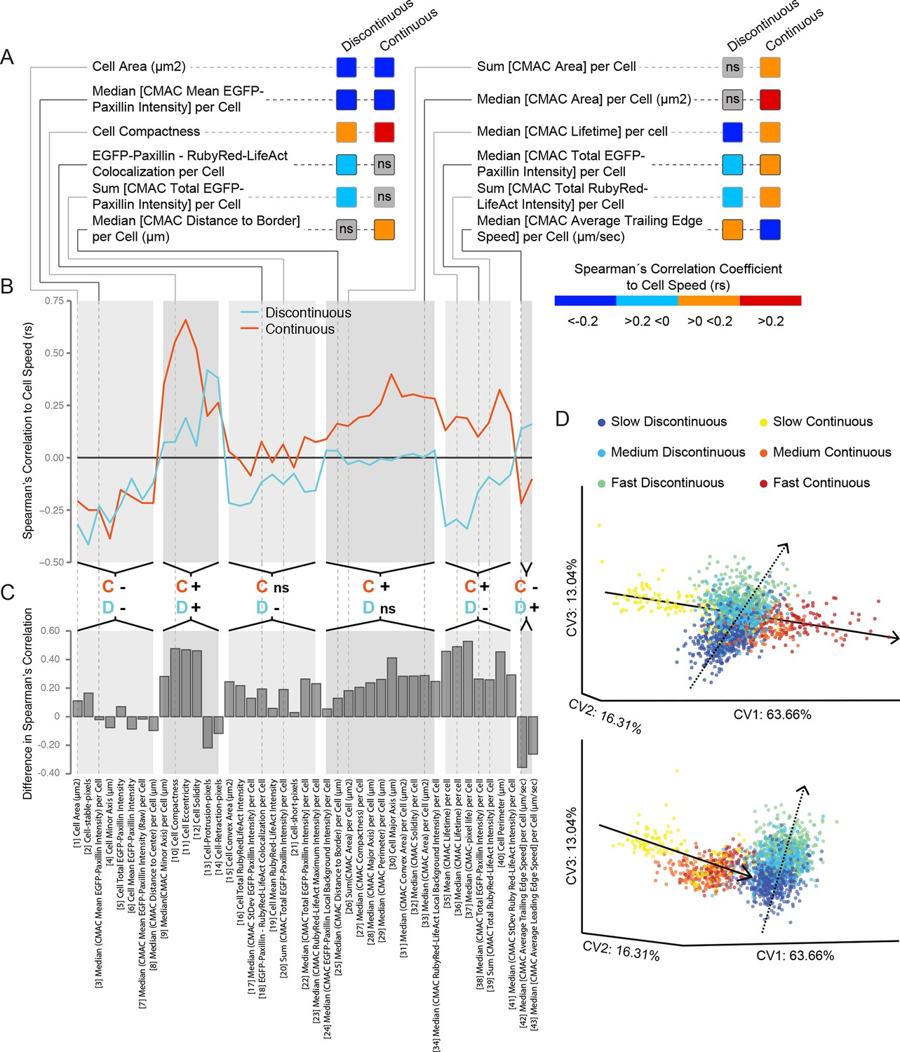 An analysis toolbox to explore mesenchymal migration heterogeneity