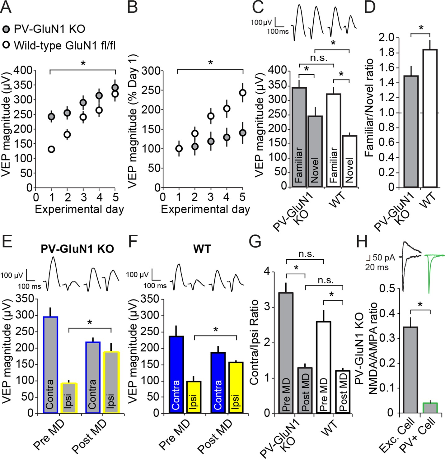 Contrasting roles for parvalbumin expressing inhibitory neurons in