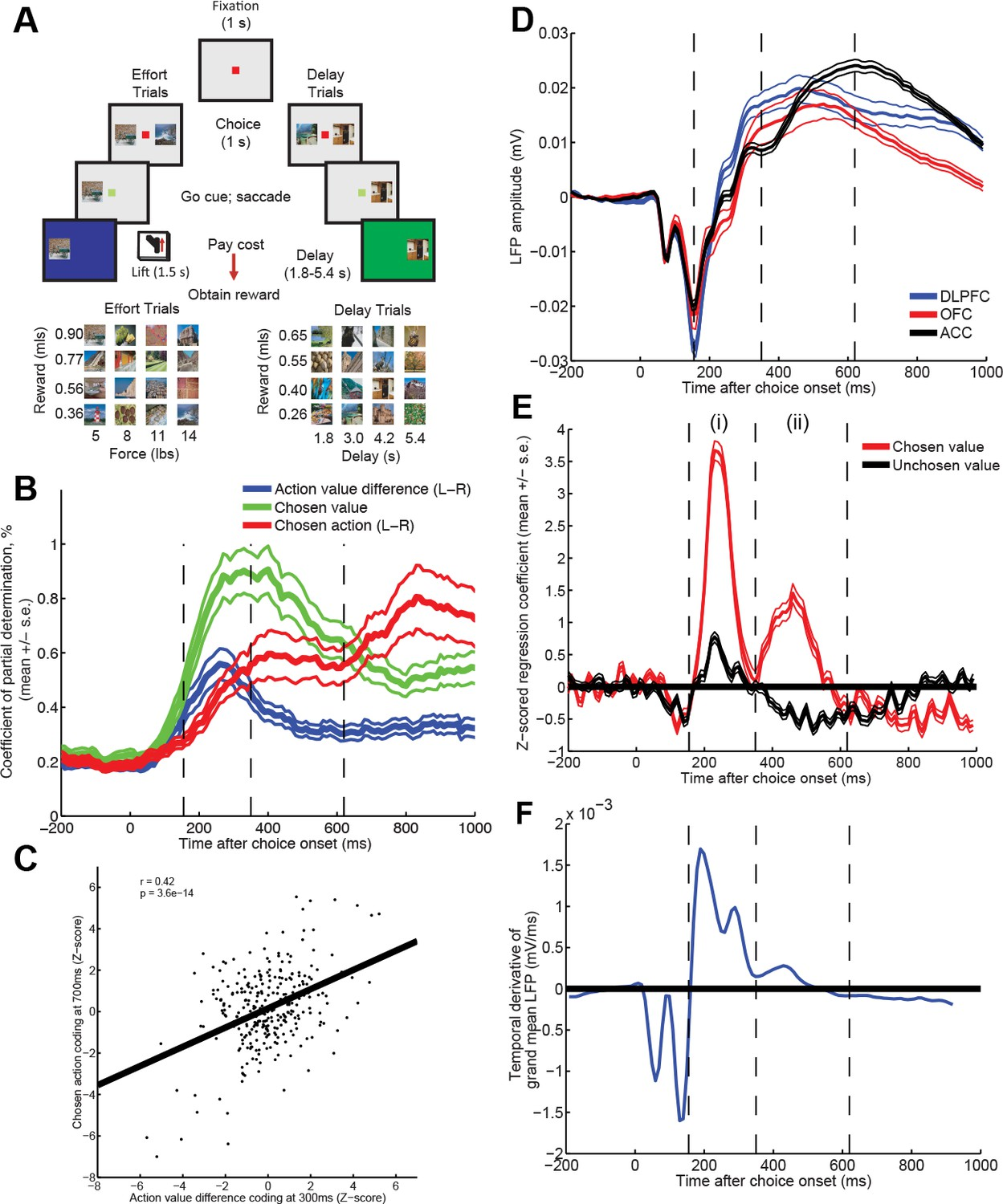 Capturing The Temporal Evolution Of Choice Across Prefrontal Cortex Electric Circuits And Fields Nuffield Foundation Time Varying Value Correlates In Single Units Lfp During