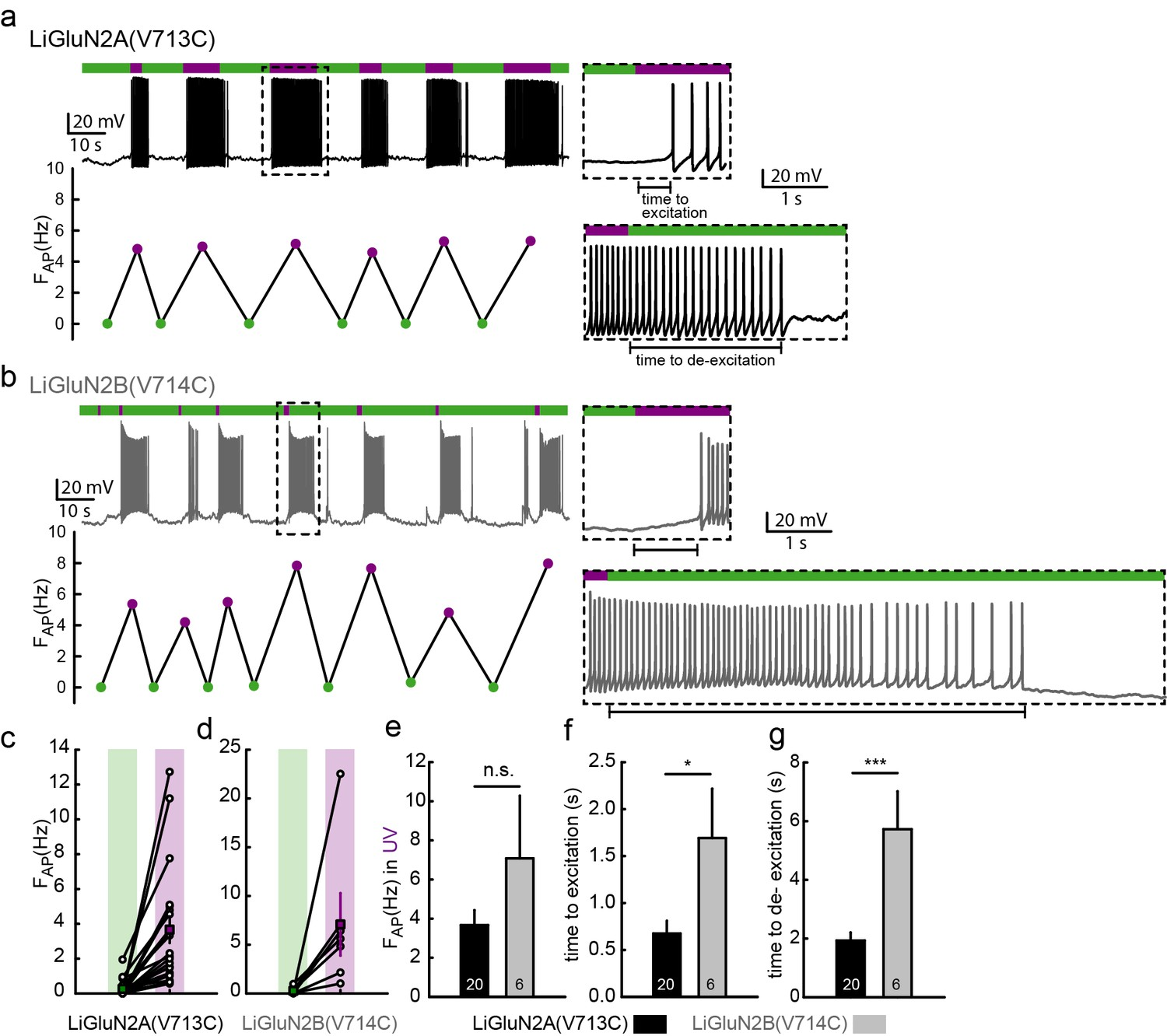 A Family Of Photoswitchable Nmda Receptors Elife Simple Circuit Drives Manages Laser Diode39s Output Analog Content Photo Activation Liglun2a And 2b Action Potential Firing In Hippocampal Neurons