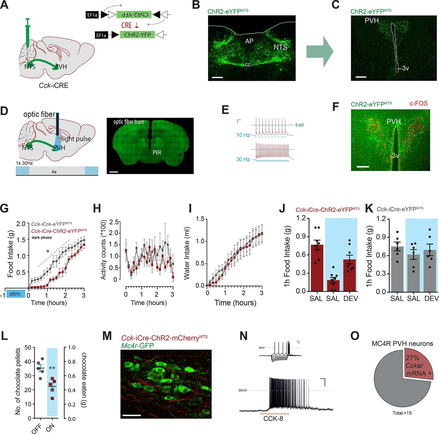 Appetite Controlled By A Cholecystokinin Nucleus Of The Solitary Circuits Gt Use Neural Sensors To Build Smart Sensor Systems Using Activation Ccknts Neurons Efferent Pvh Suppresses