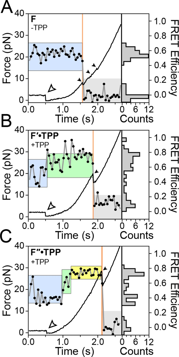 Observation Of Long Range Tertiary Interactions During Ligand 26 Ring Counter A Logic Diagram B Timing Representative Fec And Fret Traces