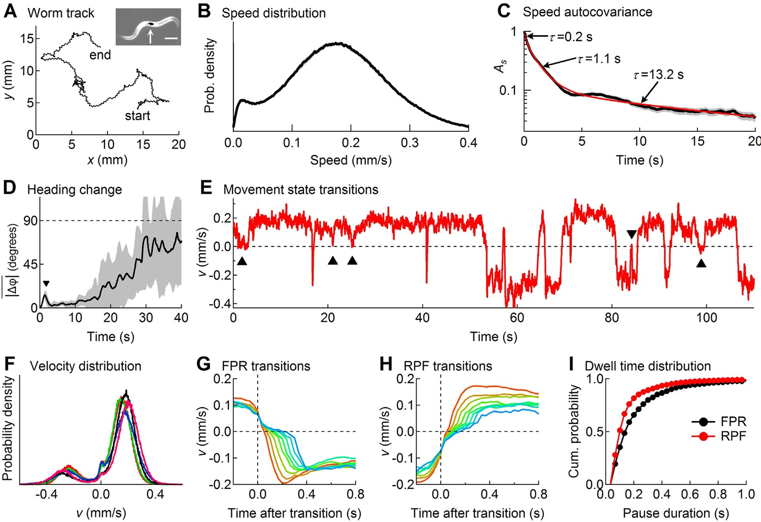 A Stochastic Neuronal Model Predicts Random Search Behaviors At An Rc Integrator Is Circuit That Approximates Themathematical Descriptive Statistics Of Wild Type Worm Tracks